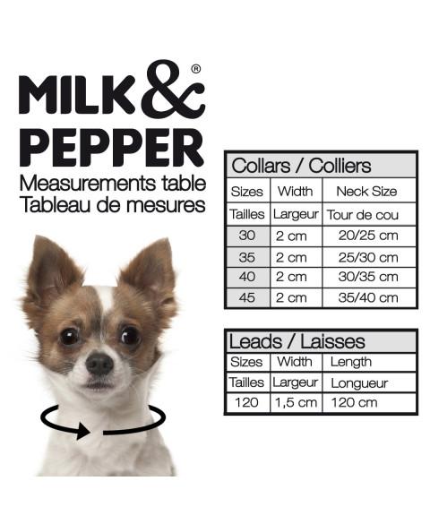 taille collier pour chien