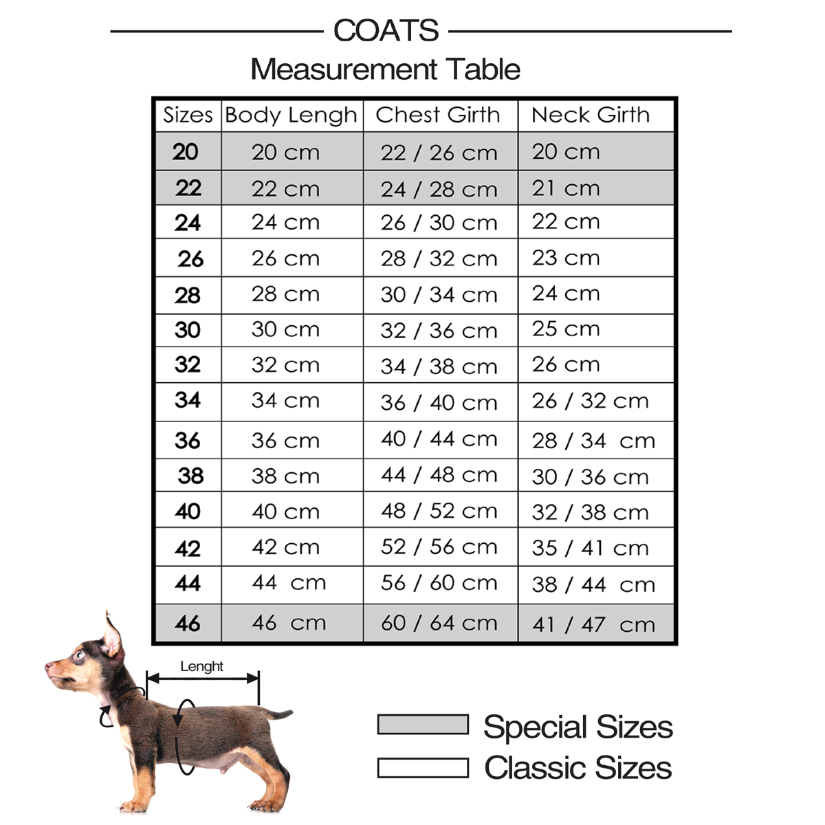 Taille manteau pour petit chien